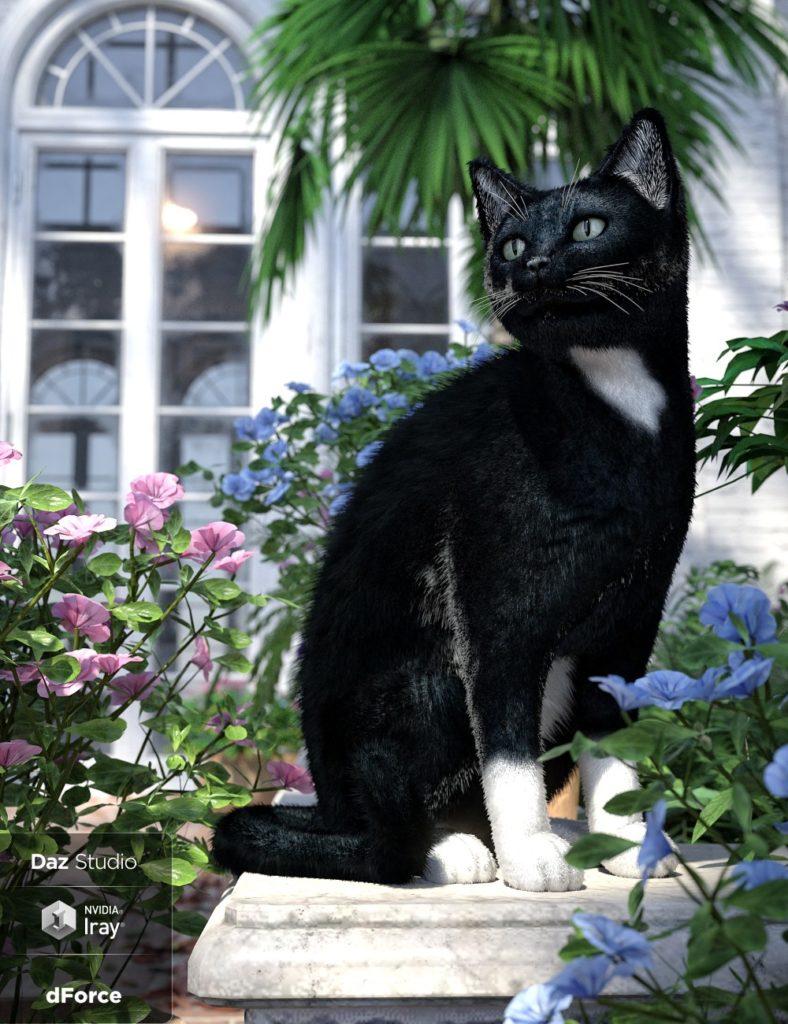 Daz House Cat with dForce Hair_DAZ3D下载站