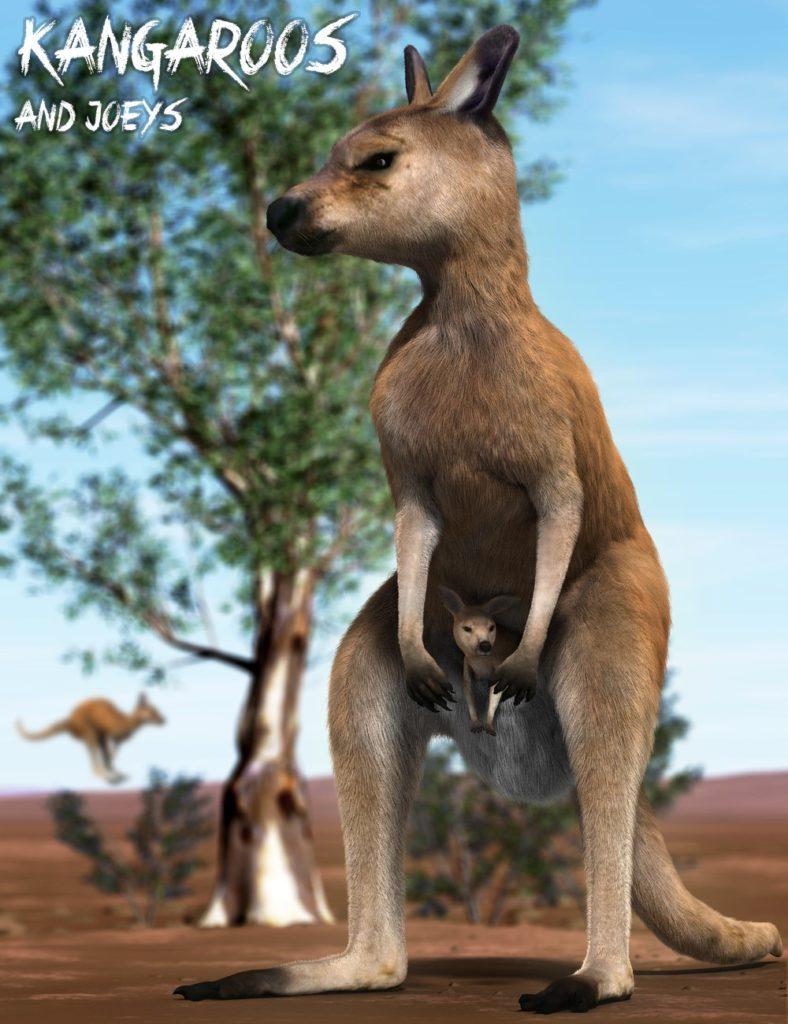 Kangaroos and Joeys_DAZ3D下载站