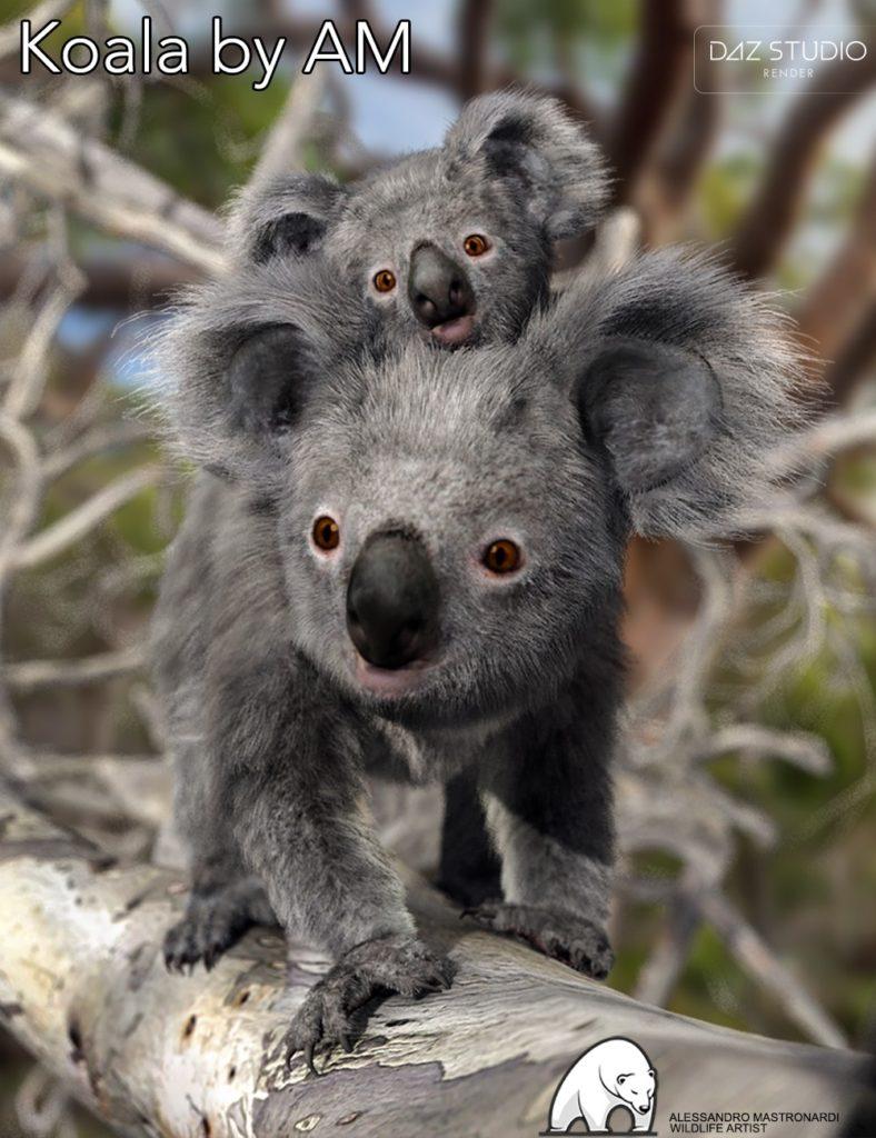 Koala by AM_DAZ3D下载站