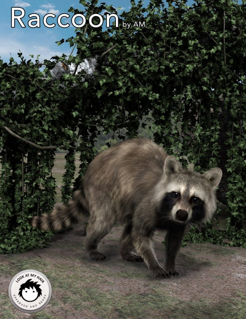 Raccoon by AM_DAZ3D下载站