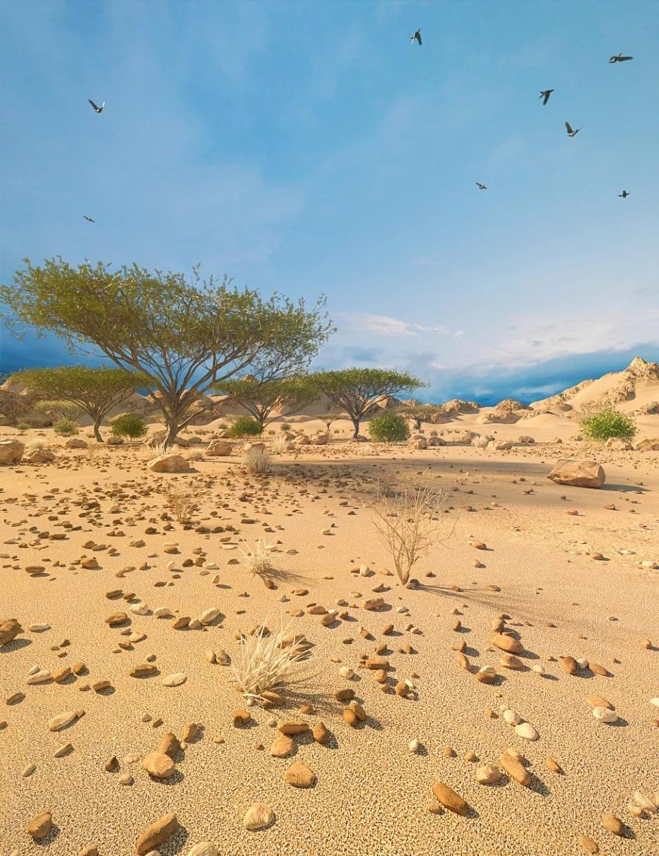 Desert Depression_DAZ3D下载站