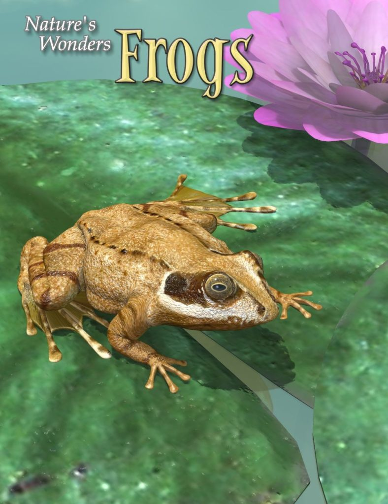Nature's Wonders Frogs_DAZ3D下载站