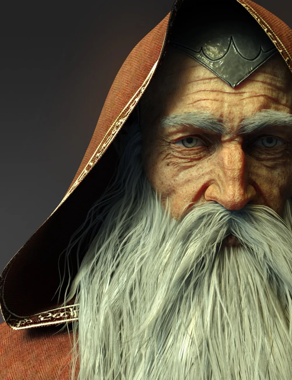 Wise Wizard HD Character for Genesis 8 Male_DAZ3D下载站