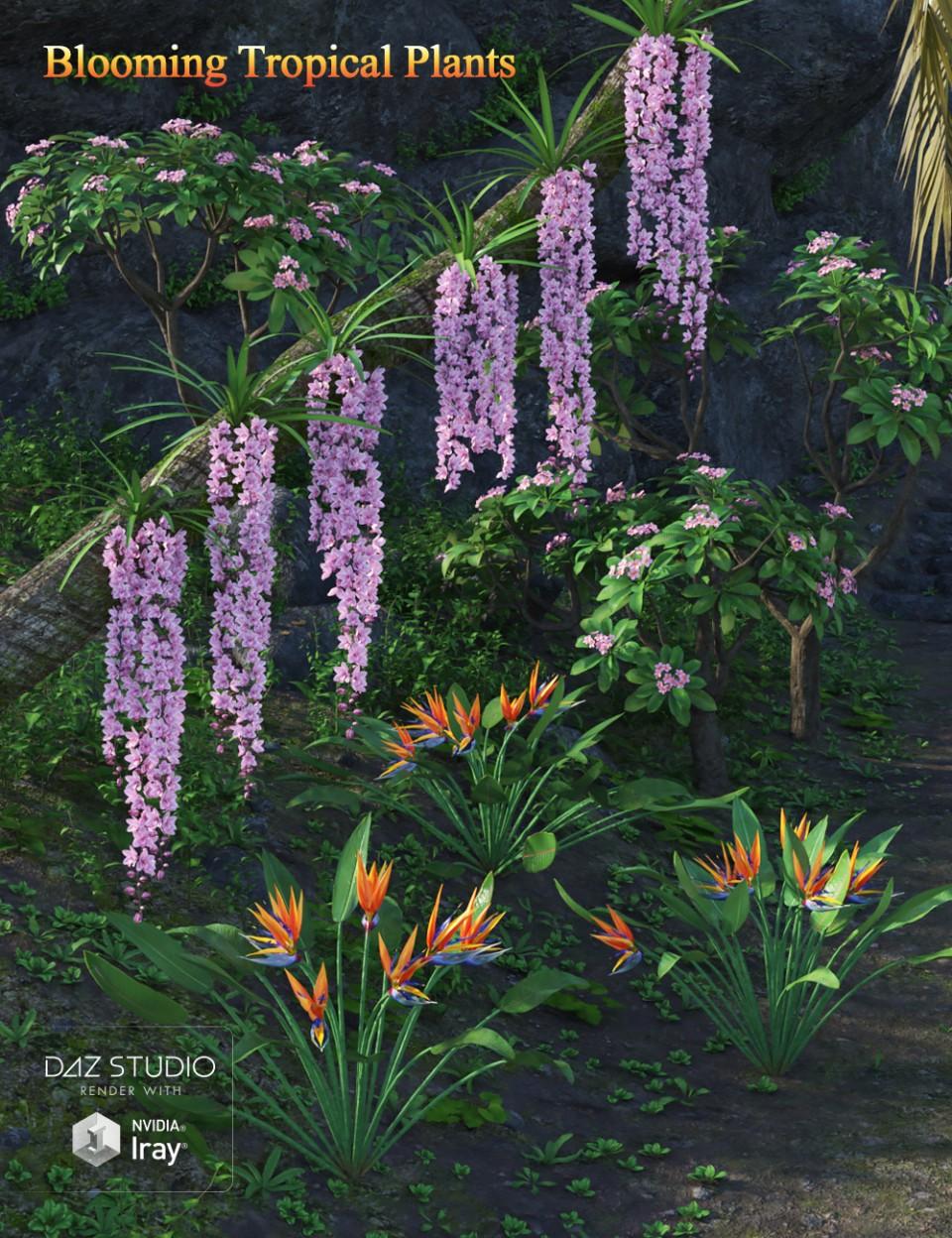Blooming Tropical Plants_DAZ3D下载站