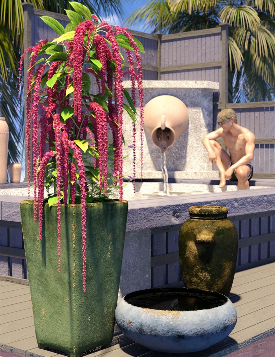 Decorative Plants and Flowers_DAZ3D下载站