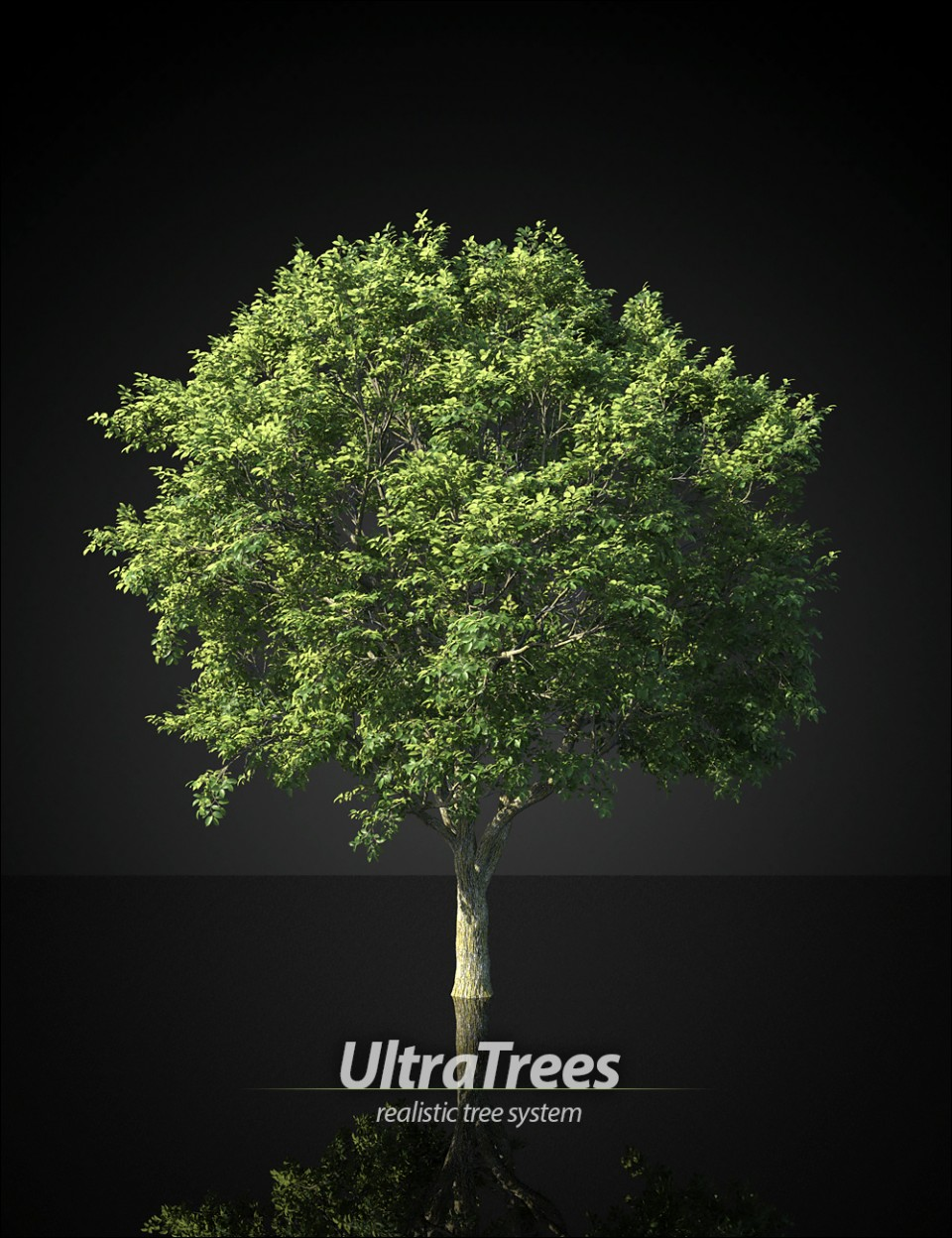 UltraTrees – Realistic Tree System_DAZ3D下载站