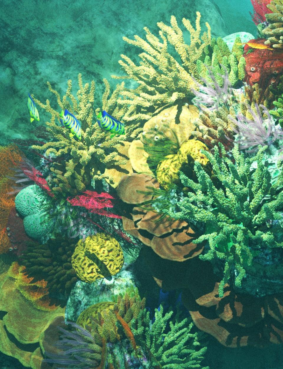 v176 Iray Coral Reef_DAZ3D下载站