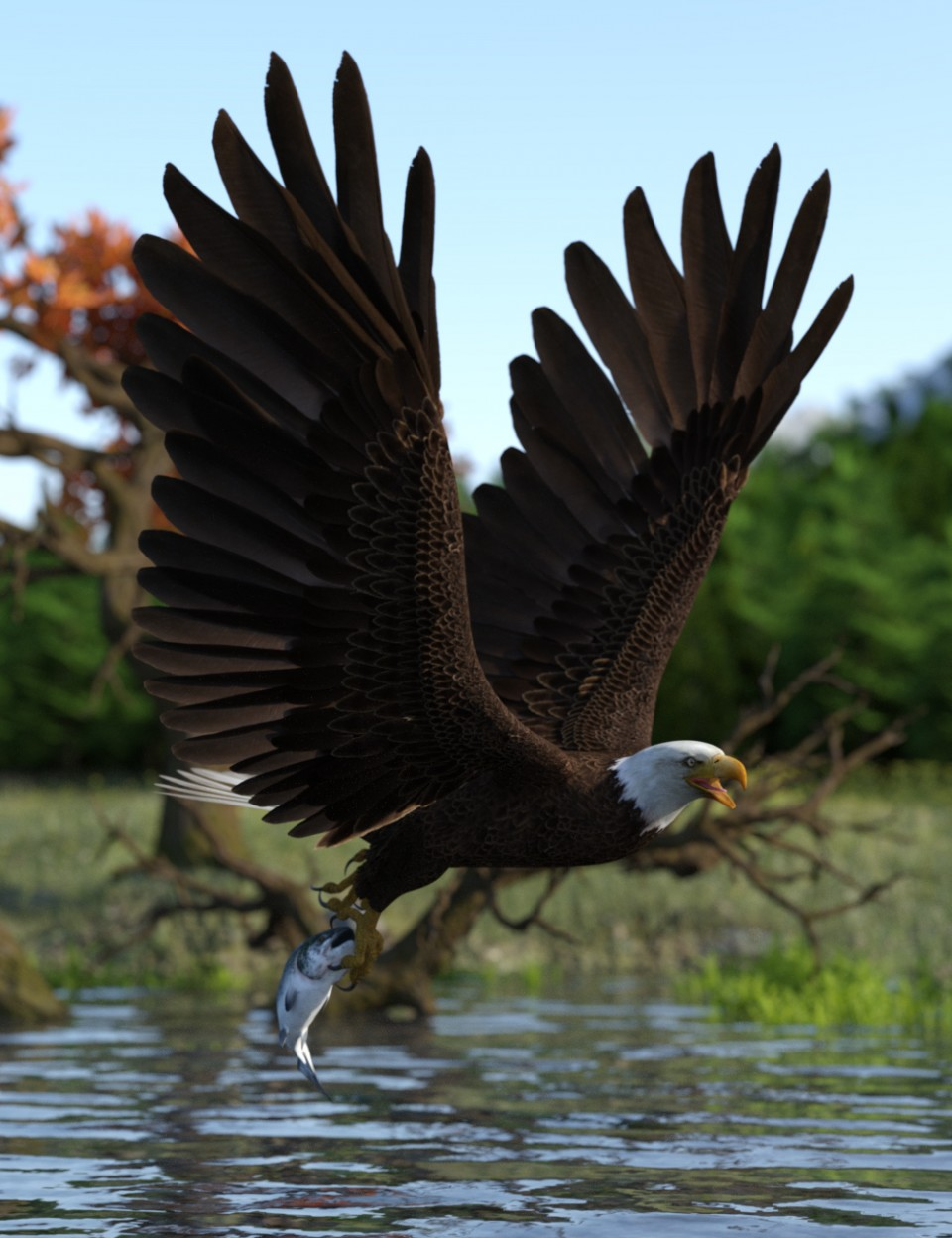 Deepsea's Eagle Poses and Fish_DAZ3D下载站