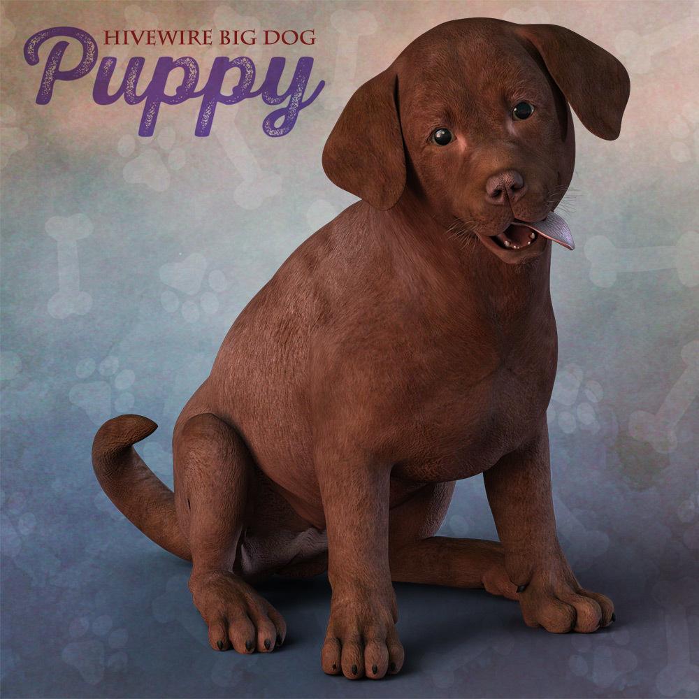 HiveWire Puppy_DAZ3D下载站