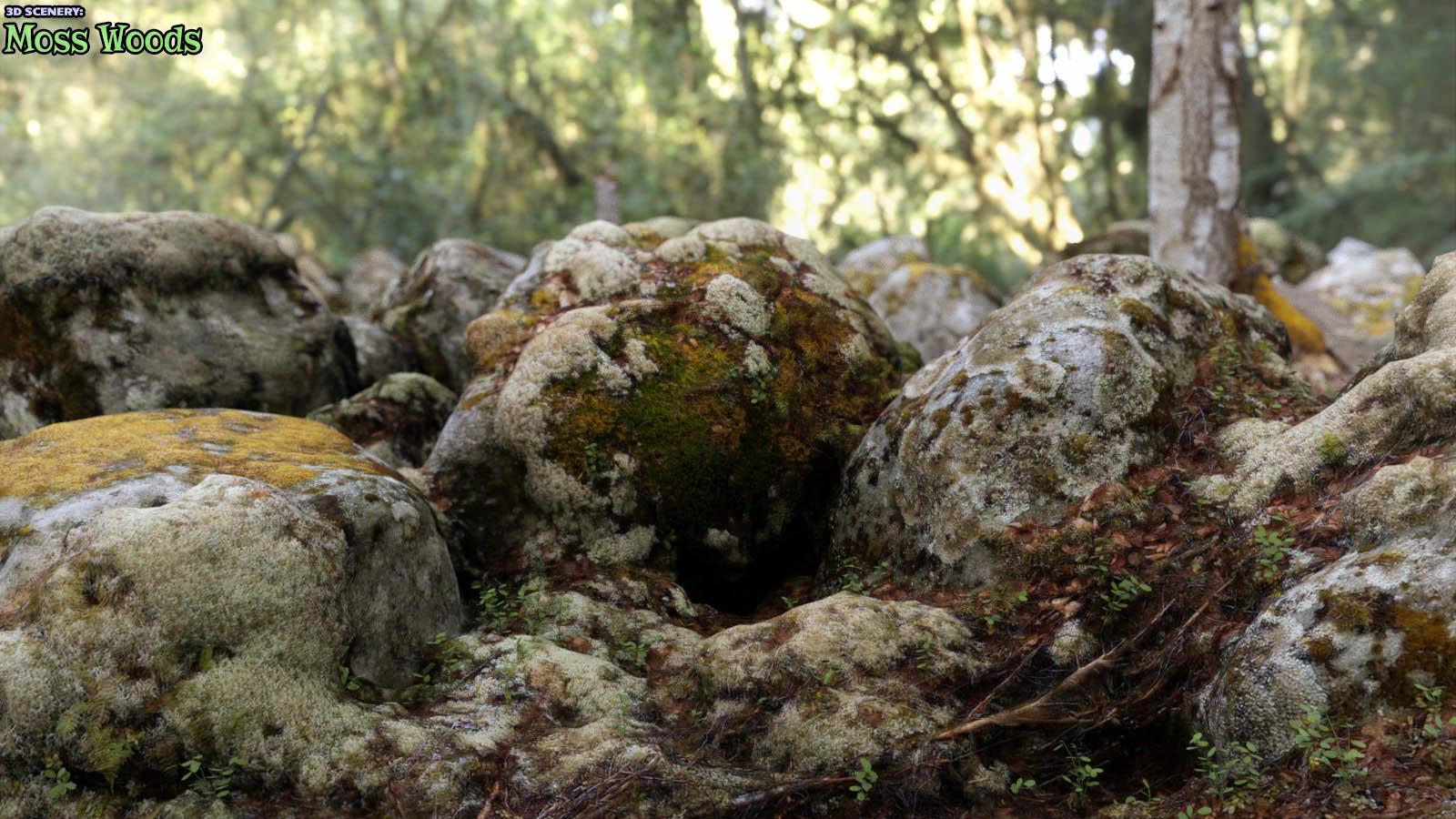 3D Scenery: Moss Woods_DAZ3D下载站