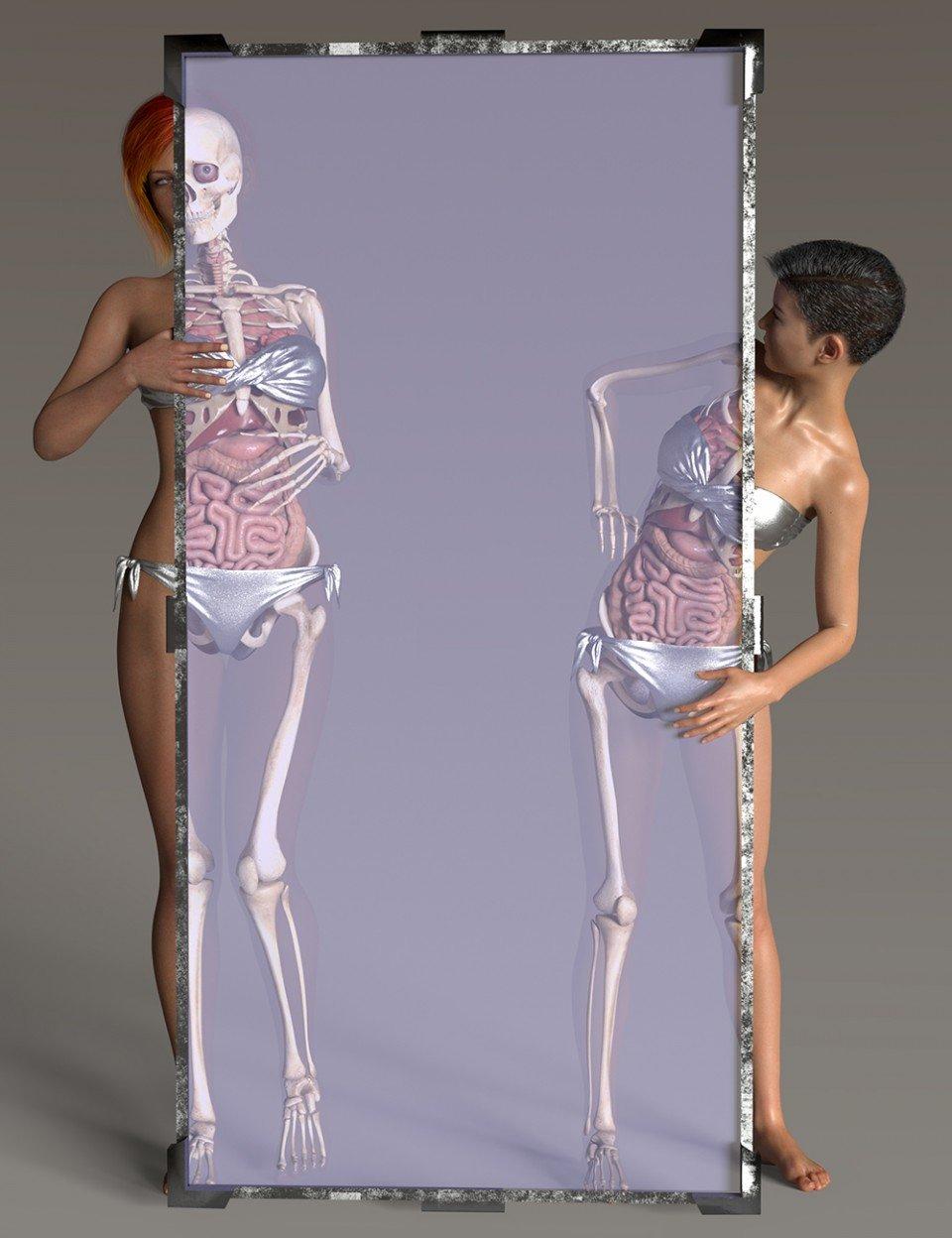 Iray Materials for Daz Anatomy_DAZ3D下载站