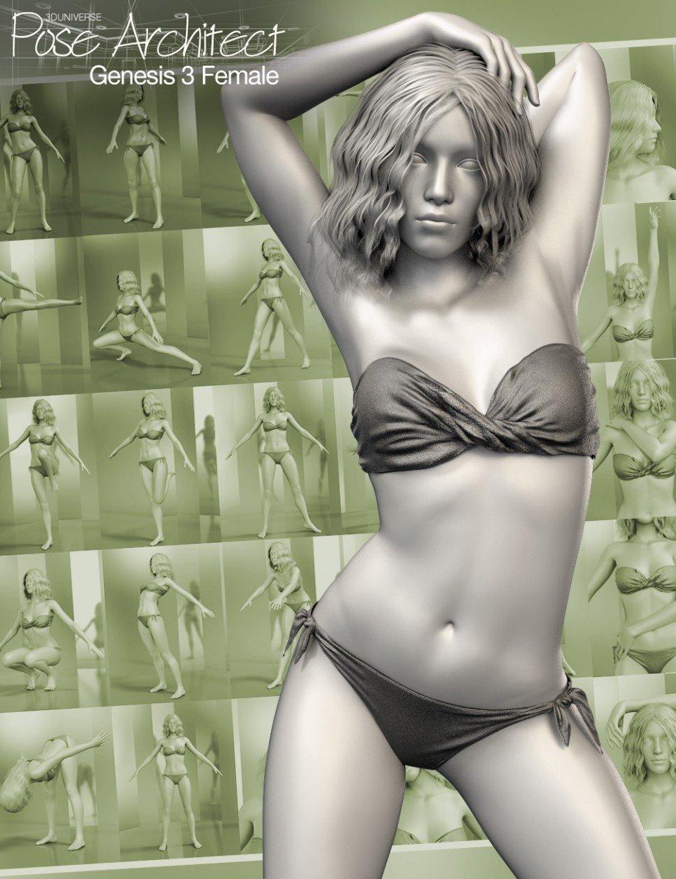 Pose Architect for Genesis 3 Female(s)_DAZ3D下载站